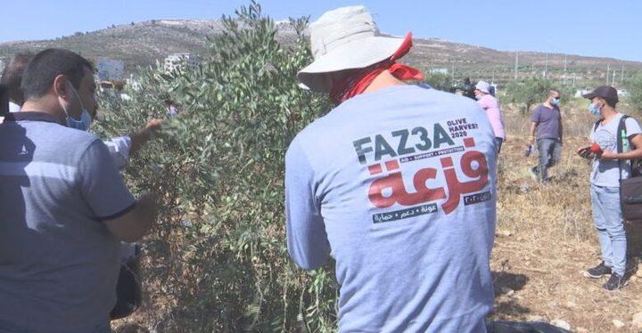 """اطلاق فعاليات الحملة الوطنية لدعم صمود المزارعين """"فزعة"""" من بيتا"""