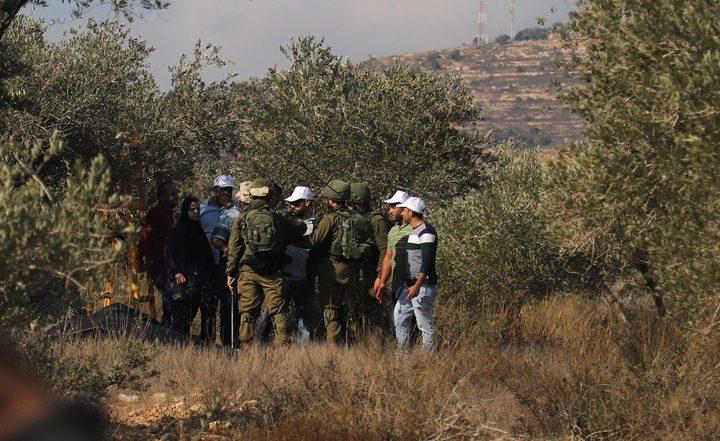مستوطنون يهاجمون قاطفي ثمار الزيتون شرق نابلس