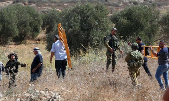الاحتلال يعتدي على المشاركين في يوم تطوعي لقطف الزيتون في سلفيت