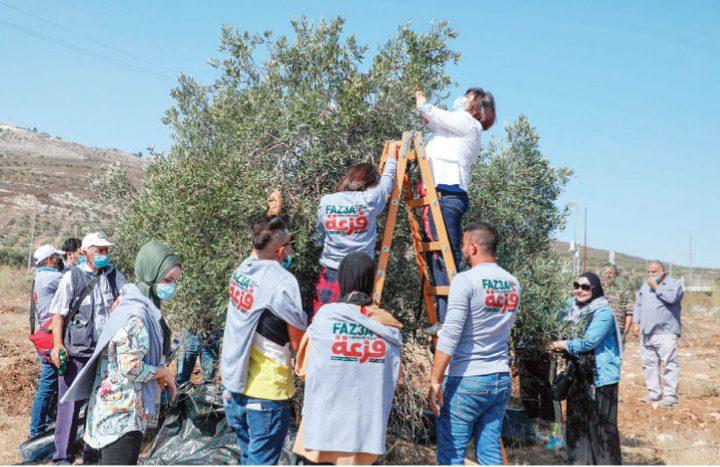 """انطلاق الحملة الوطنية """"فزعة"""" لدعم صمود المزارعين في دورا الخليل"""