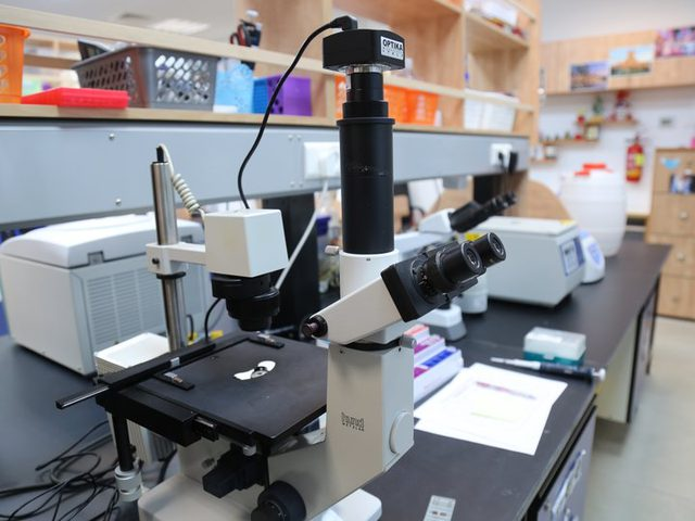 فريق بحثي من جامعة النجاح ينشرون مقالا علميا بمجلة علمية محكمة